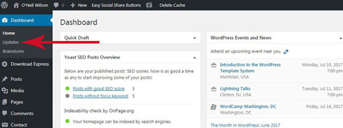 Download And Update WordPress Constantly